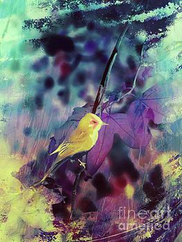 Little Yellow Song Bird by Robert Ball