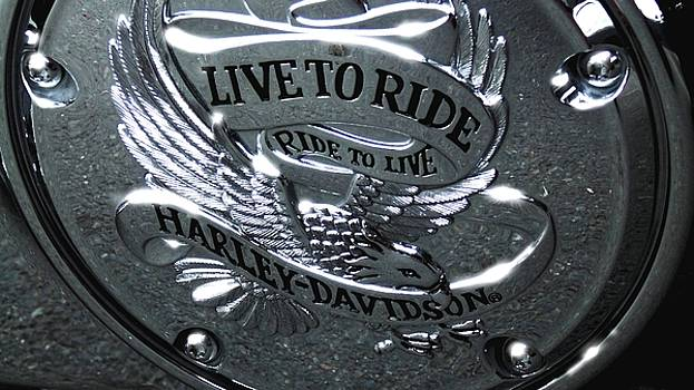 Live To Ride - Harley Davidson 1 by Marcello Cicchini