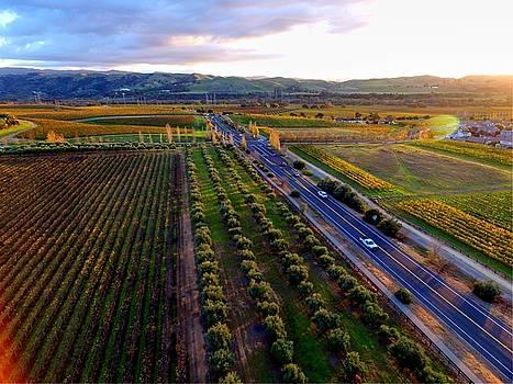 John King - Livermore Wine Country--Las Positas Winery