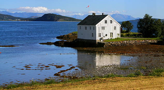 Living on the Edge of a Fjord by Laurel Talabere