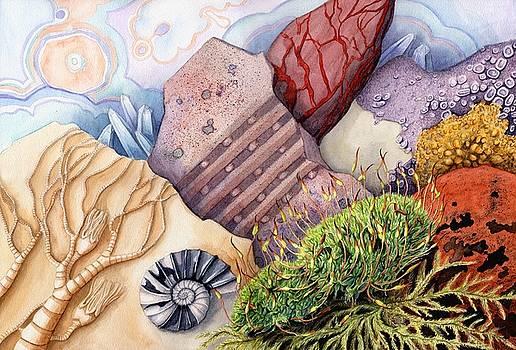 Living Rocks by Lynne Henderson
