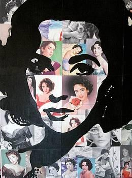 Liz Collage by Samitha Hess