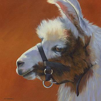 Llama Love by Alecia Underhill