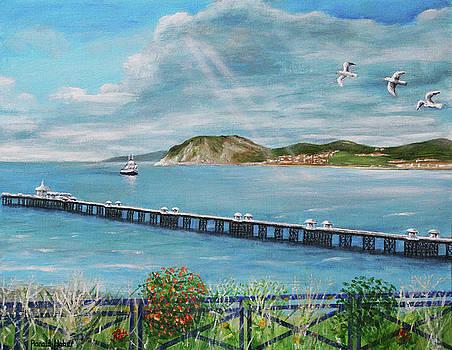 Llandudno Pier - Wales by Ronald Haber