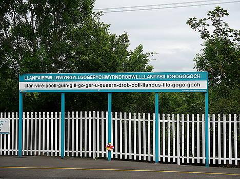 Richard Reeve - Llanfairpwllgwyngyllgogerychwyrndrobwllllantysiliogogogoch Station Platform