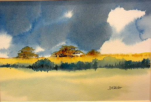 Llanos by Douglas Teller