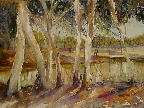 Lloyd Jones Weir Barcoldine Qld by Shirley Roma Charlton