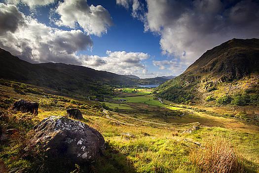 Dominick Moloney - Llyn Gwynant view 2