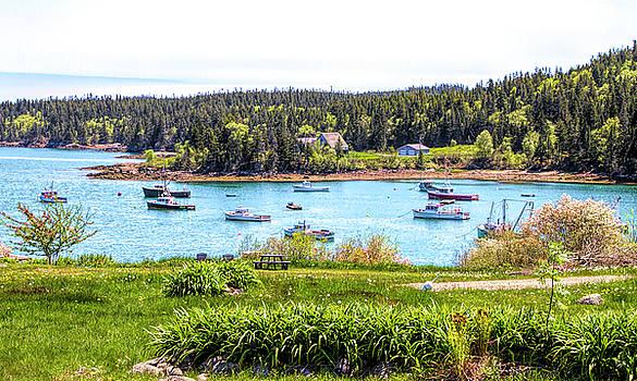 Lobster Boats  by Betty Pauwels