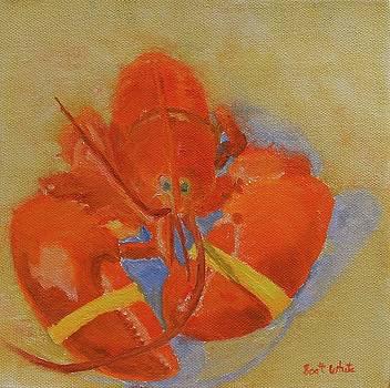 Lobster In Red by Scott W White