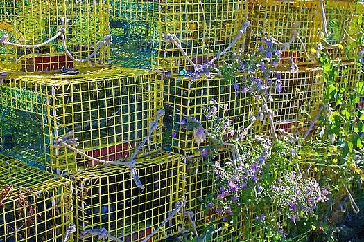 Lobster Traps by John Ellis