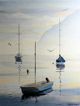 Locarno Boats in February by David Gilmore
