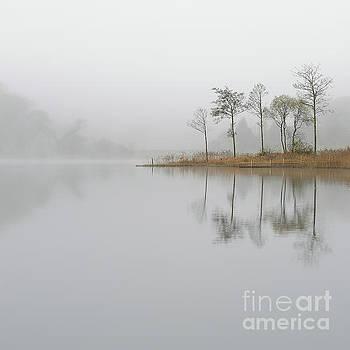 Loch Ard Misty Sunrise by Maria Gaellman