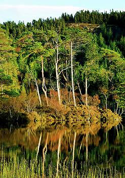 Loch Lundie by Nichola Denny