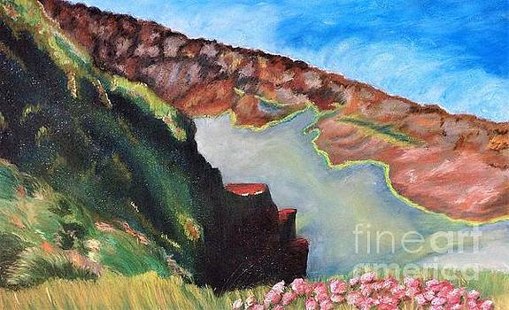 Loch na gCaorach by Jennefer Chaudhry