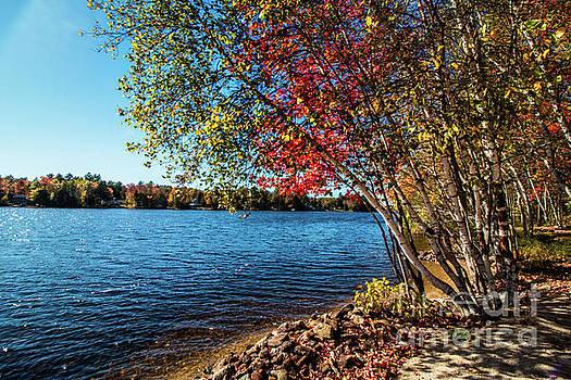 Locke Lake, N H by Mim White