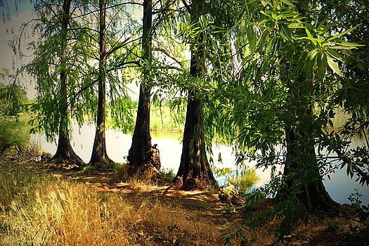 Joyce Dickens - Lodi Lake Sentinels