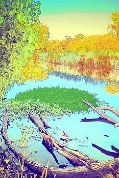 Joyce Dickens - Lodi Lake Watercolor Four