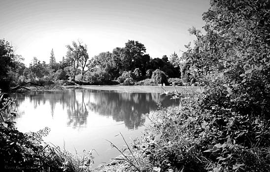 Lodi Pig Lake Reflections B and W by Joyce Dickens