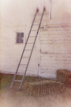 Loft Ladder by Roberta Murray