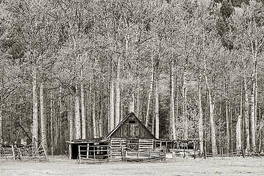 Scott Wheeler - Log Barn