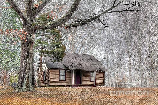 Larry Braun - Log Cabin by a Tree