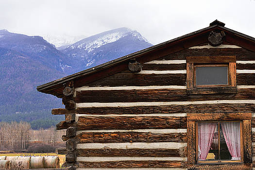 Log Cabin from the Past by Kae Cheatham