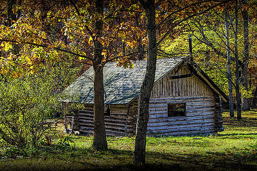 Randall Nyhof - Log Cabin Home in the Woods
