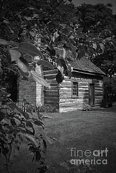 Jost Houk - Log Cabin Shadows