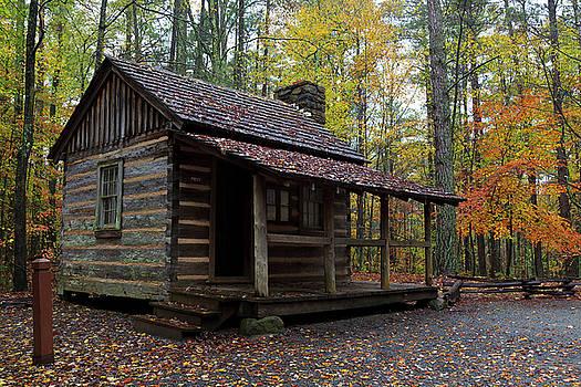 Jill Lang - Log House