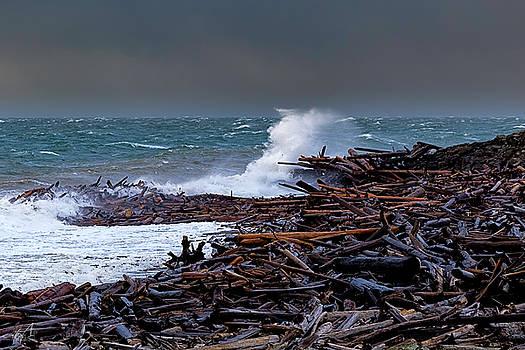 Log Jam by Thomas Ashcraft