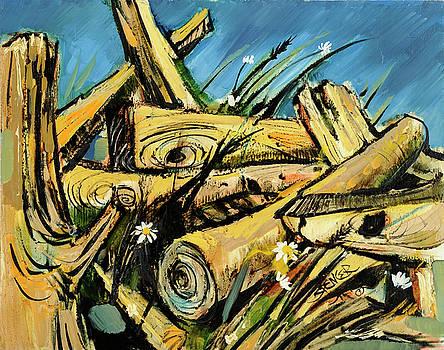 Log Pile by Steve Spencer