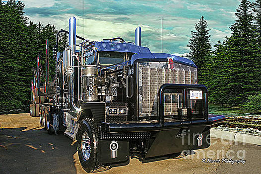 Logger in the Forest by Randy Harris