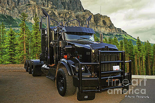 Logger in the Rockies by Randy Harris