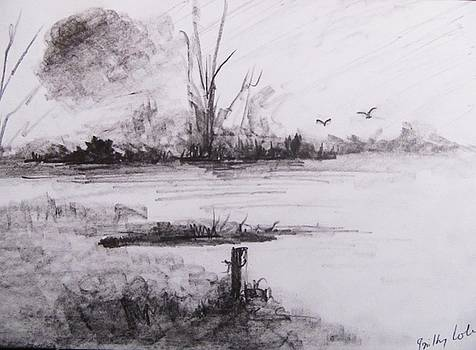 Loghrea Lake In Graphite by Trilby Cole