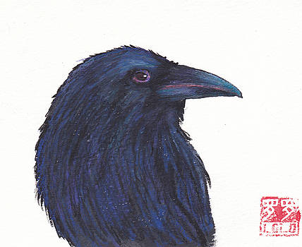 Lolo Raven by Laurel Porter-Gaylord
