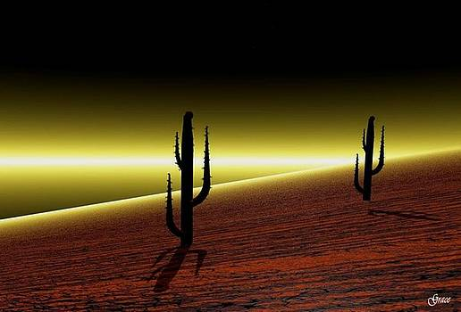 Lone Cactus by Julie Grace