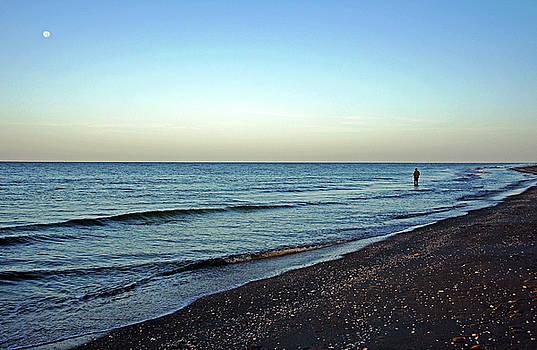 Lone Fisherman On The Beach by Debbie Oppermann