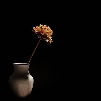 Lone Flower by Michael James