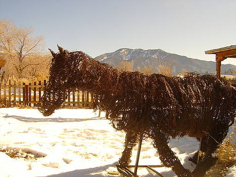 Lone Horse by Floyd Archuleta