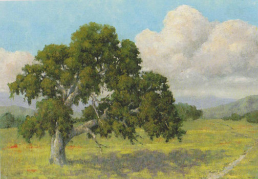 Lone Oak by Marv Anderson