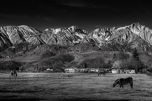 Mike Penney - Lone Pine California
