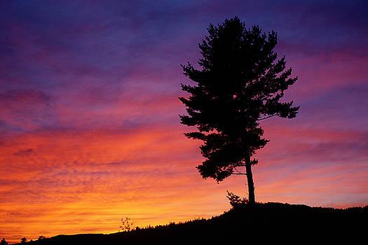 Lone Pine Sunset by Bill Morgenstern