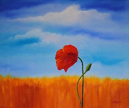 Lone Poppy by John Johnson
