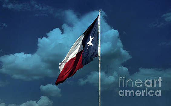 Lone Star by Joan Bertucci