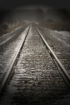 Lone Tracks by Nicole Meyer