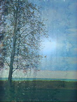 Scott Hovind - Lone Tree 2