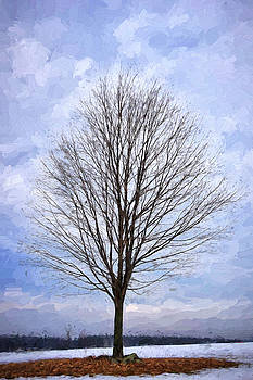 Lone Tree by Tricia Marchlik