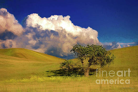 Lone Tree With Storm Clouds by John A Rodriguez