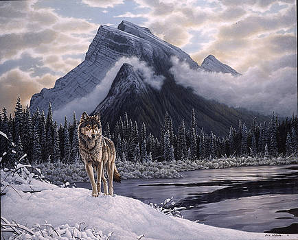 Lone Wolf   Mount Rundle Canada. by Eric Wilson